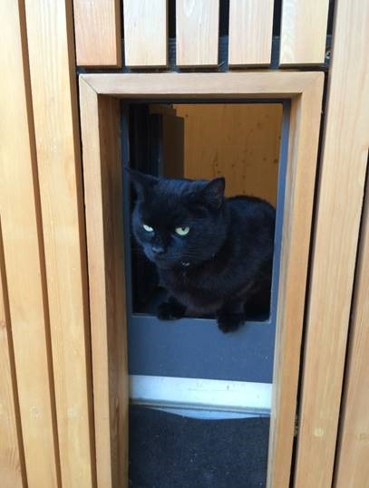passivhaus cat flap